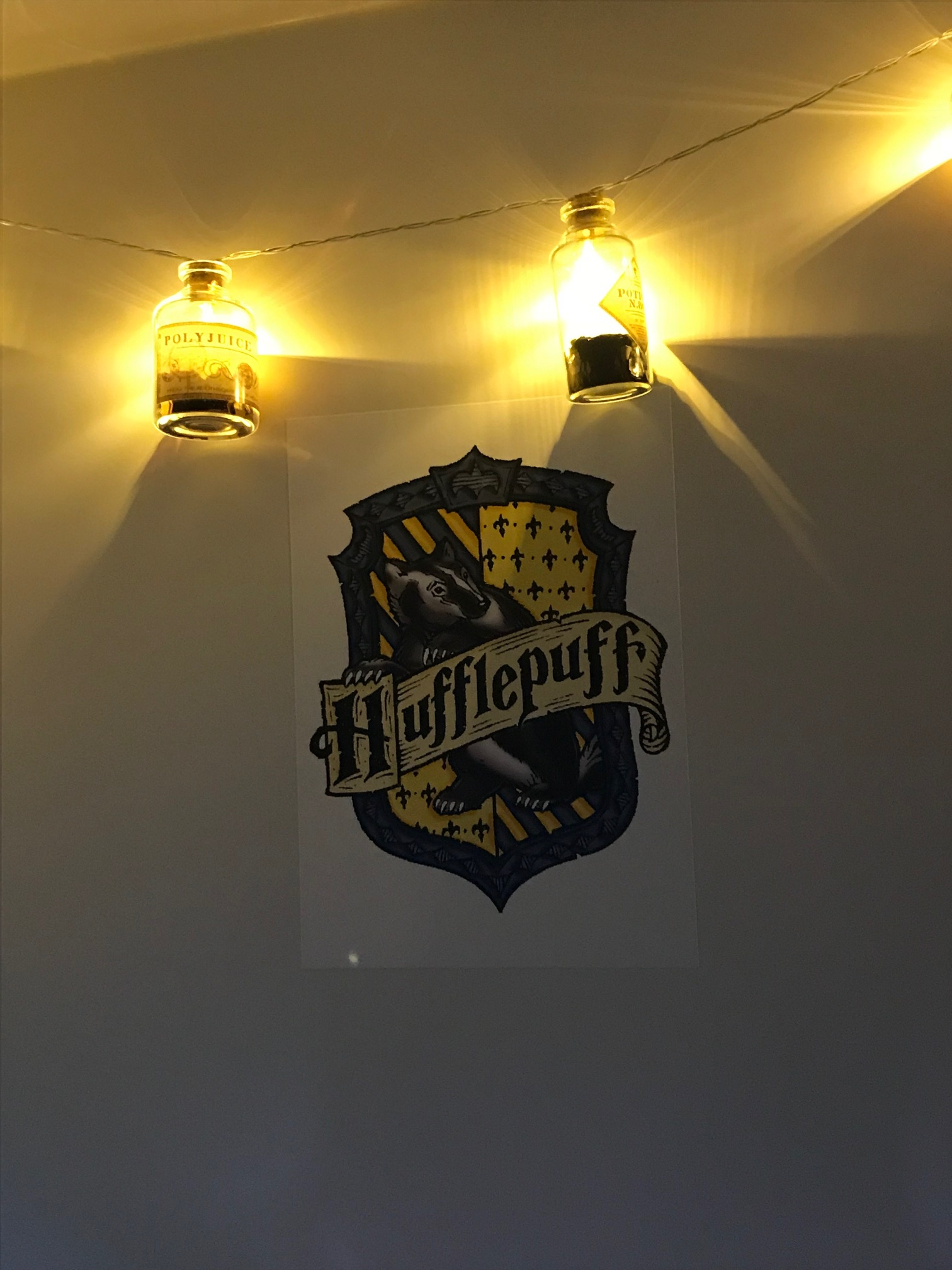 The Hairy Purrtor potion lights